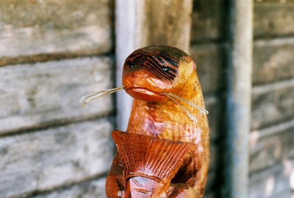 otter n fish